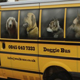 Doggy Bus Vehicle Graphics 01
